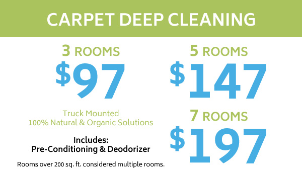 Carpet deep cleaning coupon