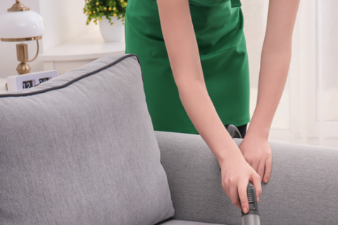 Upholstery cleaning, Furniture cleaning services, Houston