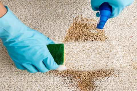 Carpet Deep Cleaning in Houston